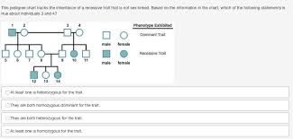 This Pedigree Chart Tracks The Inheritance Of A Recessive