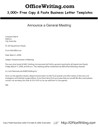 Wonderful Executive Cover Letter Example In Executive Cover Letter