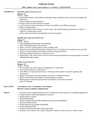 Accountant Skills Resumes Cash Accountant Resume Samples Velvet Jobs
