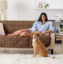 best sofa for dogs. Buy From Amazon.com Best Sofa For Dogs