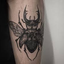 Stag Beetle On Forearm Thanks Again Ashley Thomas Bates жуки