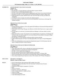 Project Planning Resume Samples Velvet Jobs