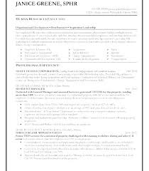Construction Operation Manager Resume It Project Manager Resume Template Technical Sample Download