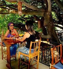 Hidden Canopy Treehouse  Audley TravelTreehouse Monteverde Costa Rica