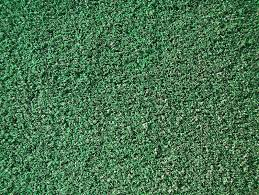 Modern Artificial Turf is Not What You Expect Artificial Turf Express
