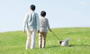朝散歩」が健康に役立つ最強ルーティンの理由(BEST TIMES) - Yahoo!ニュース