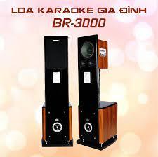 LOA ĐỨNG KARAOKE BOBOS BR-3000 – BobosAudio.com