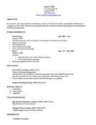 Basic Resume Template Australia Cv Template Free Professional Resume