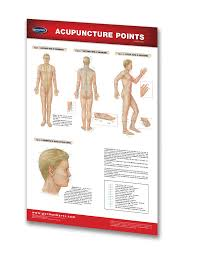 Acupuncture Chart Poster Acupuncture Points Poster Reflexology Medical Poster Quick Reference Chart