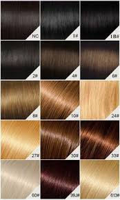 Uncommon Brown Black Hair Color Chart Jet Black To Brown Hair
