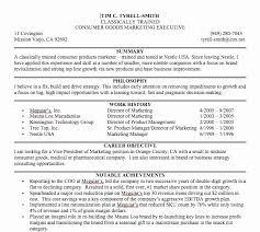 Sample Career Summary Statements Resume Beautiful Resume Summary