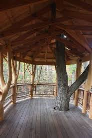 inside of simple tree houses. Inside Of Simple Tree Houses Finding A New Park To Visit Inside Of Simple Tree Houses G
