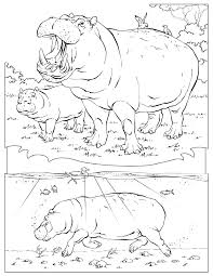 Small Picture Coloring Pages Animals National Geographic Coloring Pages