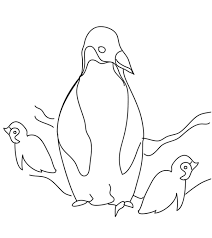 For more information, click here.* free printable penguin coloring page. Penguin Coloring Pages Free Printable For Kids
