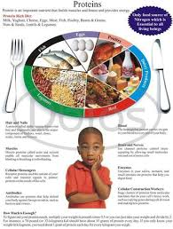 Nutrition Nursing Lab Charts