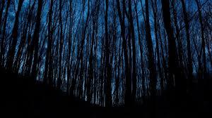 Dark Blue Aesthetic Wallpaper Pc