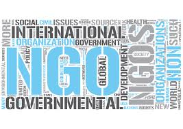 essay on the initiatives by non governmental organisation ngos essay on the initiatives by non governmental organisation ngos to protect our environment