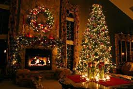 christmas trees ...