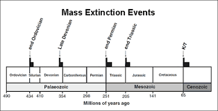 Extinction Timeline Chart Mass Extinction Events
