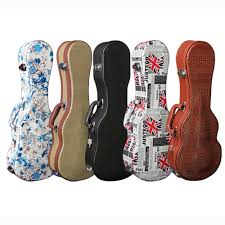 Image result for guitar case hard selection at haywire Custom Guitars