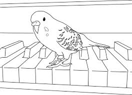 Small Picture Parakeet Playing Piano Coloring Page coloring pages Pinterest