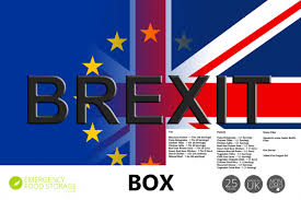 Image result for brexit pro and con