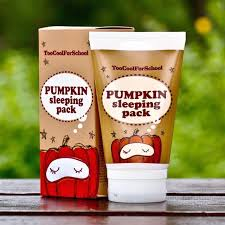 Image result for too cool for school pumpkin sleeping pack
