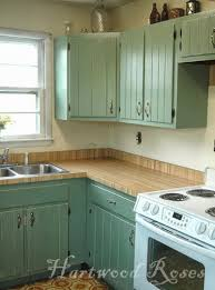 Chalk Paint Kitchen Painted Kitchen Cabinets Reviews Quicuacom