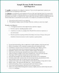 Resume Objective Examples Stunning Examples Of Resumes Objectives And Resume Objective For Customer