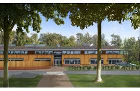 Deer Park Tree House  Blue ForestTreehouse School London