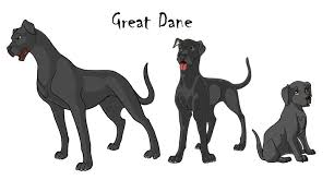 Great Dane Size Chart Great Dane Color Chart Great Dane Growth Chart Great