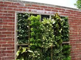 Small Picture Small Herb Garden Ideas pueblosinfronterasus