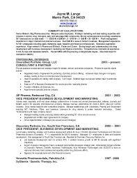 Sales Resume Summary Examples Sales Resume Summary Qualifications