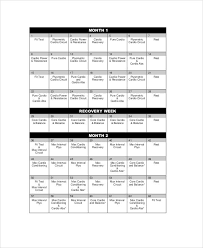 Sample Insanity Workout Sheet 6 Examples In Word Pdf Excel