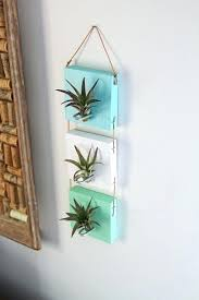 wall mounted plants mounted air plants cool living art set of by wall mounted artificial plants