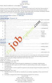 resume examples s representative cipanewsletter cover letter resume examples s representative inside s