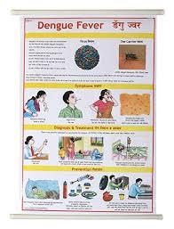 Vijay Surgical Dengue Disease Lamination Chart 50x70cm Long