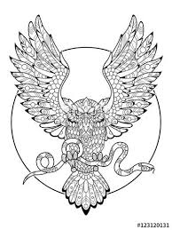Small Picture 257 best Owl Coloring Pages for Adults images on Pinterest