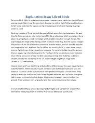 example of explanation essay example of explanatory essays  define process essay example of a formal essay essay formal essay explanatory essay examples example