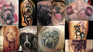 эскизы тату питбультерьер клуб татуировки фото тату значения эскизы