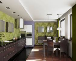 Small Galley Kitchen Small Galley Kitchen Ideas Luxury Color Option For Small Galley
