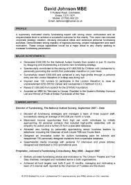Professional Curriculum Vitae Writing Service Usa 20 Free Resume ...