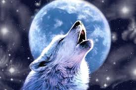 wolf howling at the moon. Modren Wolf Image 0 To Wolf Howling At The Moon T