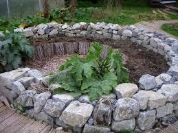 Kitchen Garden Blog Garden Sarah Brownes Kitchen Garden Blog Page 3