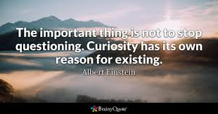 Quotes About Questioning Yourself Best Of Questioning Quotes BrainyQuote