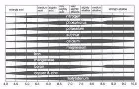 Ph Of Vegetables Chart Arkansas Vegetable Gardening How To Plant A Vegetable