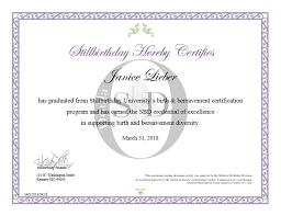 Janice Lieber, SBD | Still Birth Day