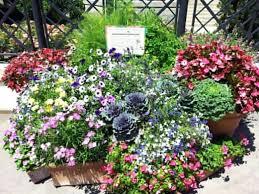 Patio Ideas ~ Patio Planters Ideas Good Front Door Pot Plants ...