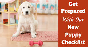 new puppy checklist written beside a pup sitting behind a red bone chew toy