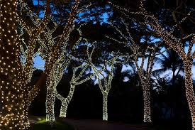 outdoor fairy lighting. fairy light wrapped trees ideas for garden party decorations table settings lighting outdoor d